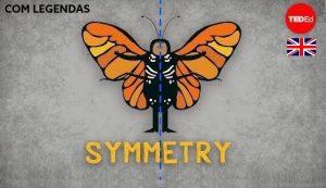 Symmetry - TedED